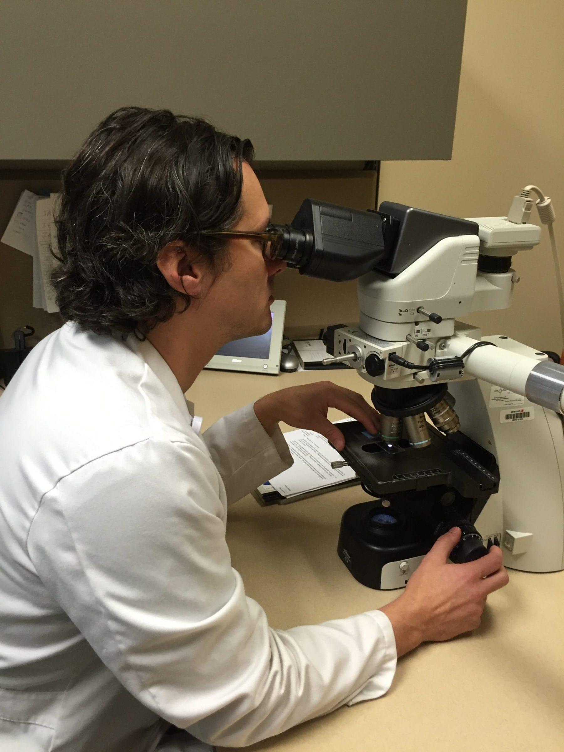 Dr. Jeffrey Zwerner